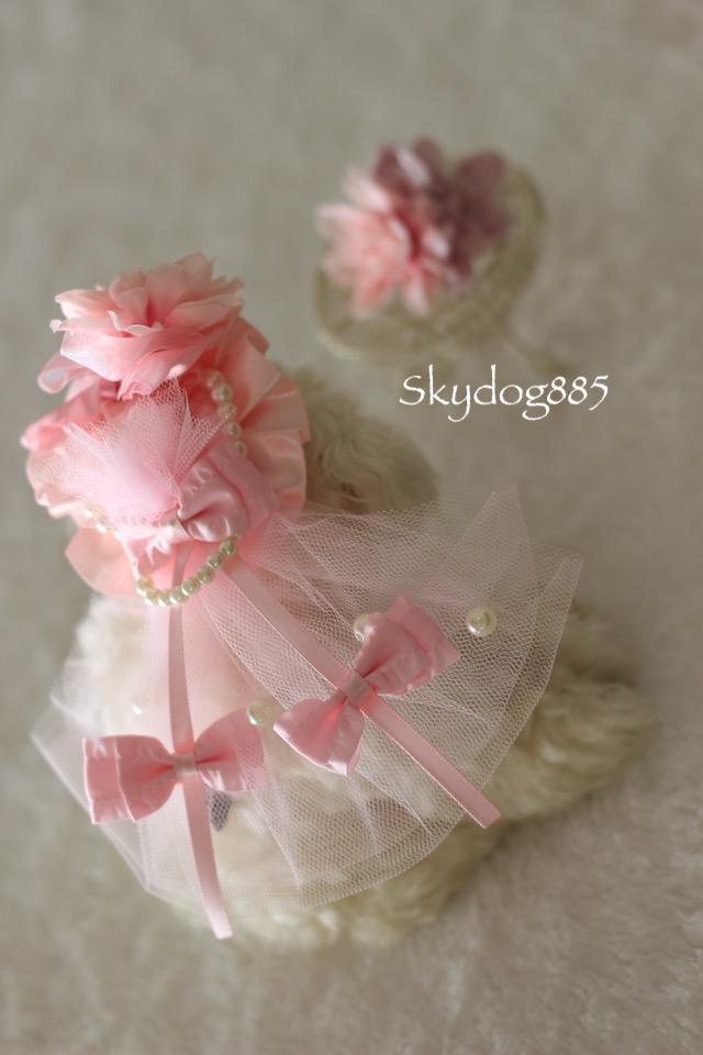 画像1: ミニダリア帽子♡ヘッドドレス・PinkPink