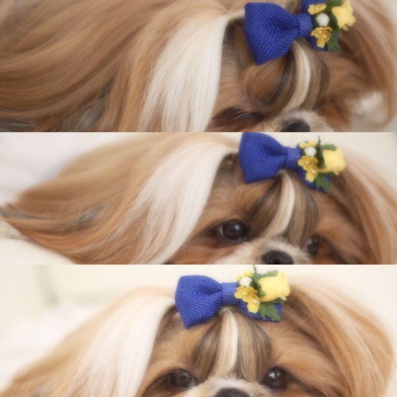 画像1: 美女と野獣♡麻のリボン♡ノーマル・バレッタ♡