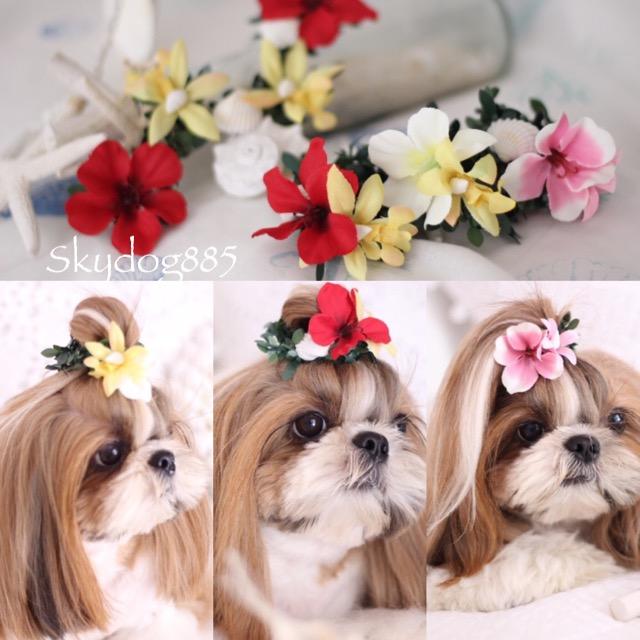 画像1: ハワイアンflower♡ちょんまげ花かんむりSS * バリエーション選択