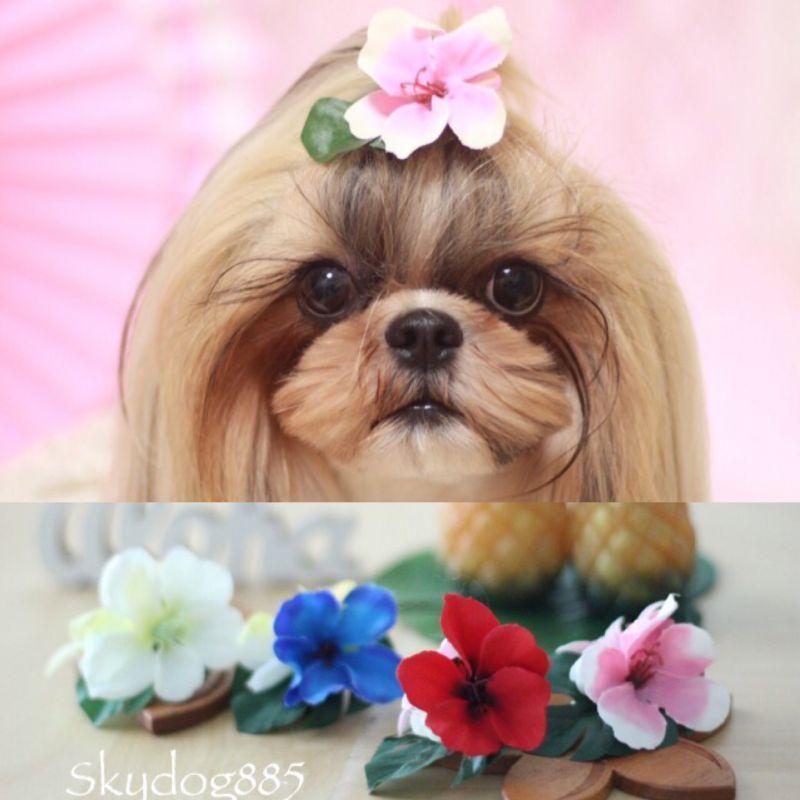 画像1: ハワイアンflower♡クリップ♡カラー選択