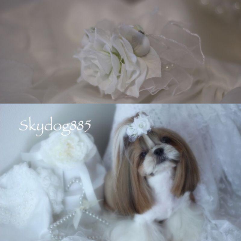 画像1: ★★SALE★★White wedding 2019 ♡オーガンジーパールのリング♡バレッタ